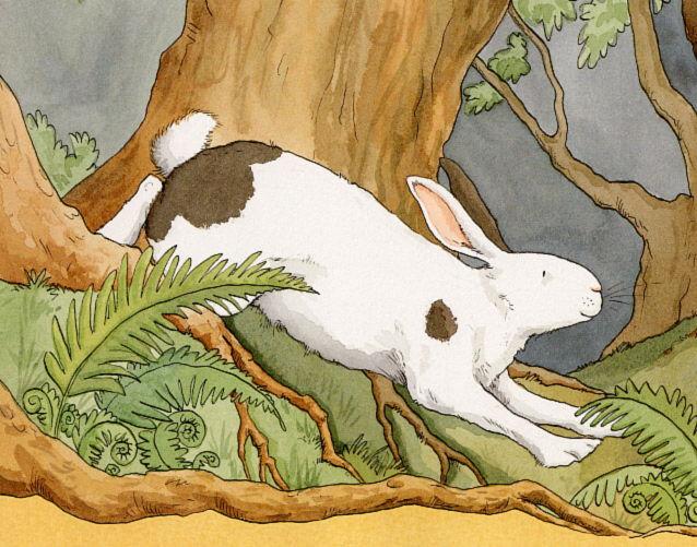 BunnyHoney